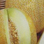 Melone Emir H 1g