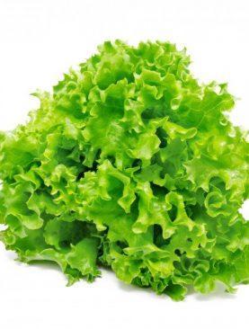 Salāti lapu LOLLO BIONDA 1g