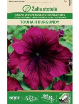 Petūnijas Touha H Burgundy 20s